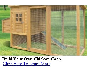Hen house plans and mobile chicken tractor plans Make your own hen house
