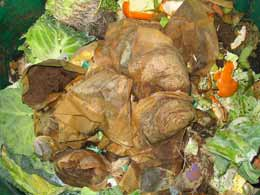 How to build a compost pile: kitchen waste ingredients