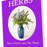 Growing Herbs, and Using Them Too