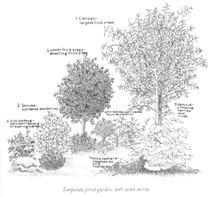 Permaculture stacking layers