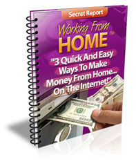 easy ways to make money from home on the internet ewen chia