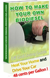 Make your own bio diesel