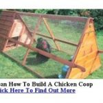 Hen House Plans